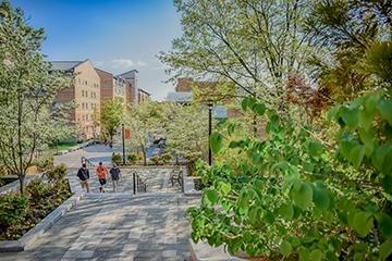 Tuition St John S University