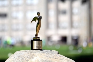 Telly Award on a rock