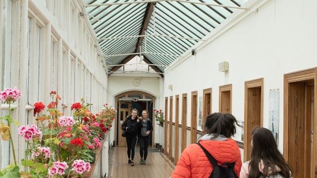 College Of Art Design Limerick
