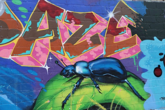 Mural of beetle under the letters AZE