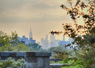 NYC Skyline from St. John's Campus